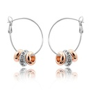 Imitated crystal Earrings  Strung happiness 1080