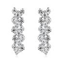 AAA grade zircon earrings  Roman earrings White 15689