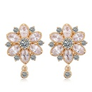 AAA grade Zircon Earrings 18960
