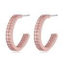 AAA grade zircon earrings  Fantasy Platinum NHKSE21527