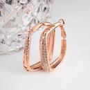 Alloy Fashion Geometric earring  Rose alloy NHLJ3642Rose alloy
