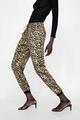 Chiffon Fashion  pants  (Picture color-S) NHAM6674-Picture-color-S