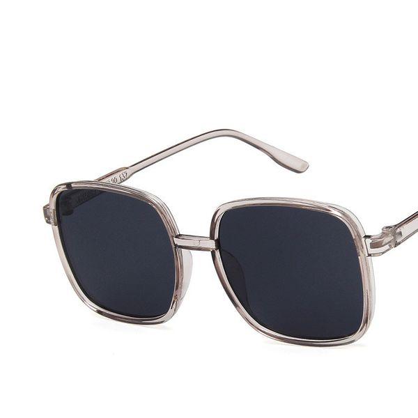 Plastic Simple  glasses  (C1) NHKD0522-C1