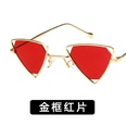 NHKD0521-Gold-frame-red-film