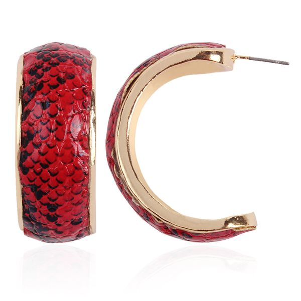 Alloy Fashion Geometric earring  (red) NHNMD4989-red