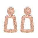 Alloy Fashion Geometric earring  Alloy NHJJ5329Alloy