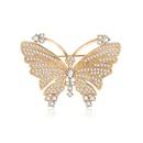 Alloy Fashion Bows brooch  61187215 NHXS217461187215