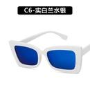 Plastic Fashion  glasses  C1 NHKD0531C1