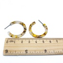 Alloy Fashion  earring  Style one NHOM1254Styleone