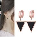 TitaniumStainless Steel Korea earring  Fine Jewelry NHNSC14845