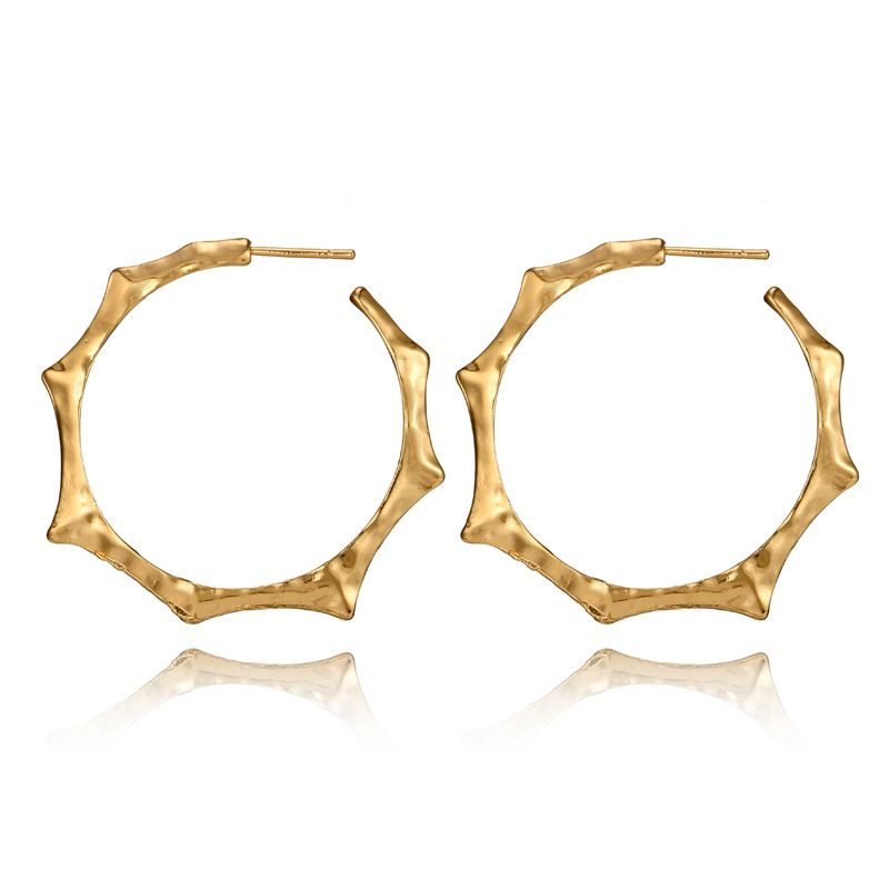 Alloy Vintage Geometric earring  (Main color) NHGY1813-Main-color