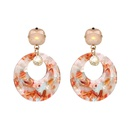 Plastic Fashion Geometric earring  Redbrown NHJJ4659Redbrown