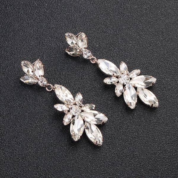 Alloy Fashion Geometric earring  (Alloy) NHHS0137-Alloy