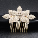Alloy Fashion Geometric Hair accessories  Alloy NHHS0060Alloy