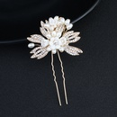 Alloy Fashion Flowers Hair accessories  Alloy NHHS0103Alloy
