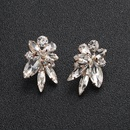 Alloy Fashion Flowers earring  Alloy NHHS0136Alloy