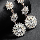 Alloy Fashion Flowers earring  Alloy NHHS0152Alloy
