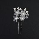 Alloy Fashion Flowers Hair accessories  white NHHS0228white