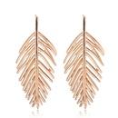 Alloy Fashion earring NHNSC11774