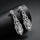Alloy Fashion Flowers earring  Alloy NHHS0421Alloy