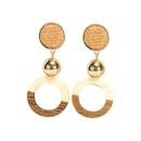 Alloy Fashion Geometric earring  Alloy + light coffee NHTF0366Alloylightcoffee