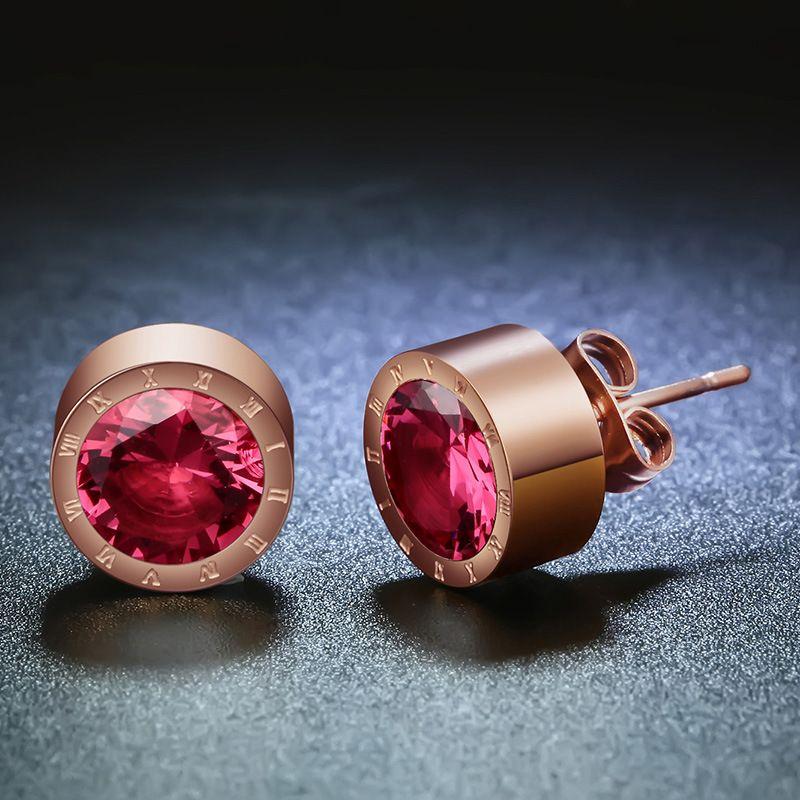 Titanium&Stainless Steel Simple Geometric earring  (January - Garnet) NHHF0751-January-Garnet