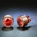 TitaniumStainless Steel Simple Geometric earring  January  Garnet NHHF0751JanuaryGarnet