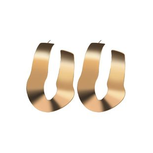 Alloy Fashion Geometric earring  (Alloy) NHBQ1650-Alloy's discount tags