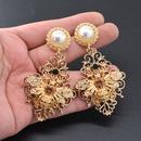 Beads Vintage Animal earring  Alloy NHNT0621Alloy
