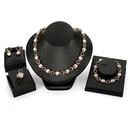 Alloy Fashion  necklace  61174433 alloy NHXS175561174433alloy