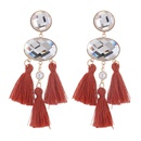 European and American exaggerated fringed temperament earrings coffee NHNPS4905