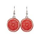 Alloy Fashion Geometric earring  Red pomelo NHYL0145Redpomelo