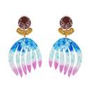 Plastic Fashion Geometric earring  51259 NHJJ520151259