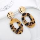 Plastic Korea Geometric earring  E01211  Fashion Jewelry NHSD0537E01211