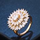 Copper Fashion Geometric Ring  Alloy  Fine Jewelry NHAS0422Alloy