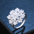 Copper Fashion Flowers Ring  Alloy  Fine Jewelry NHAS0441Alloy