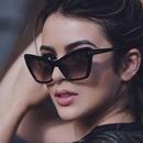 Plastic Fashion  glasses  Bright black ash  Fashion Jewelry NHKD0662Brightblackash