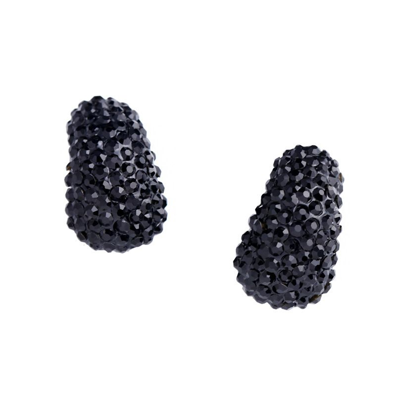 Alloy Fashion Geometric earring  black  Fashion Jewelry NHAS0609black