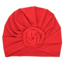 Cloth Fashion Flowers Hair accessories  red  Fashion Jewelry NHWO0640red