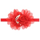Cloth Fashion Flowers Hair accessories  red  Fashion Jewelry NHWO0645red