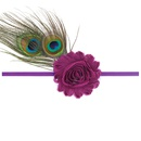 Cloth Fashion Tassel Hair accessories  Peacock feather  Fashion Jewelry NHWO0671Peacockfeather
