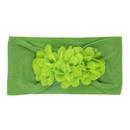 Cloth Fashion Geometric Hair accessories  green  Fashion Jewelry NHWO0753green