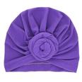 NHWO0640-purple
