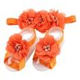 NHWO0656-Orange