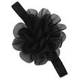 NHWO0664-black