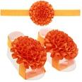 NHWO0681-Orange