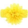 NHWO0686-yellow