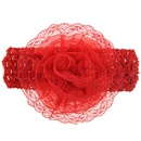 Cloth Fashion Flowers Hair accessories  red  Fashion Jewelry NHWO0793red