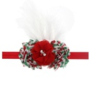 Cloth Fashion Flowers Hair accessories  SD0371  Fashion Jewelry NHWO0895SD0371