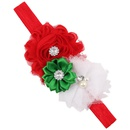 Cloth Fashion Flowers Hair accessories  SD0441  Fashion Jewelry NHWO0896SD0441